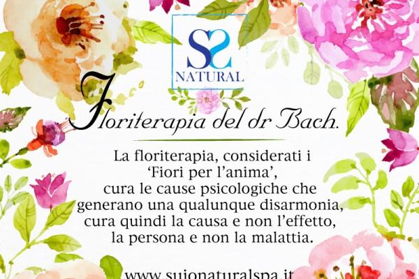 floriterapiaD7BB64F2-3977-9AAA-3F50-1184D49F3A5F.jpg